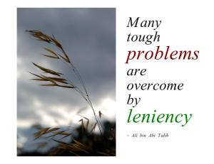 Many tough problems are overcome by leniency ~ Ali bin Abi Talib