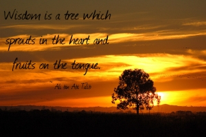 Wisdom is a tree which grows in the heart and fruits on the tongue.